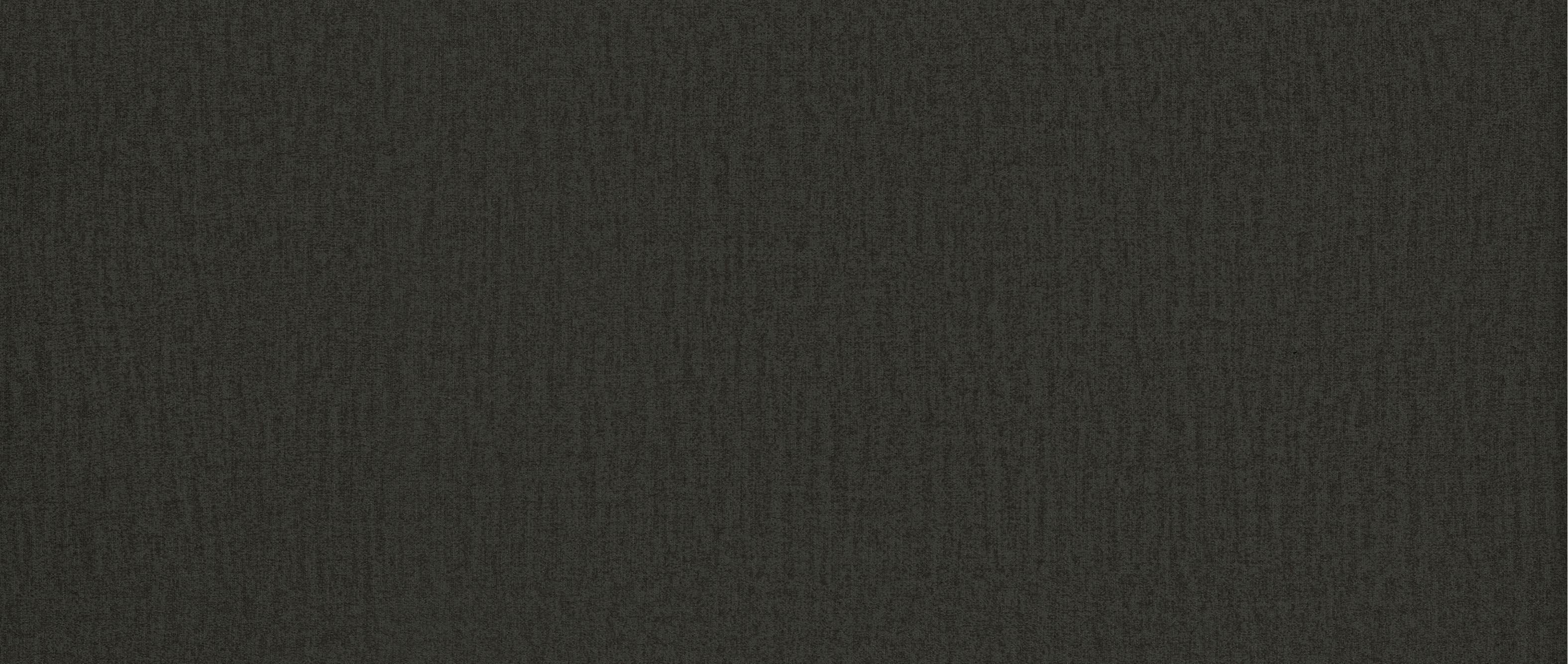 Kolor skóry: Monolith 95 tekstura